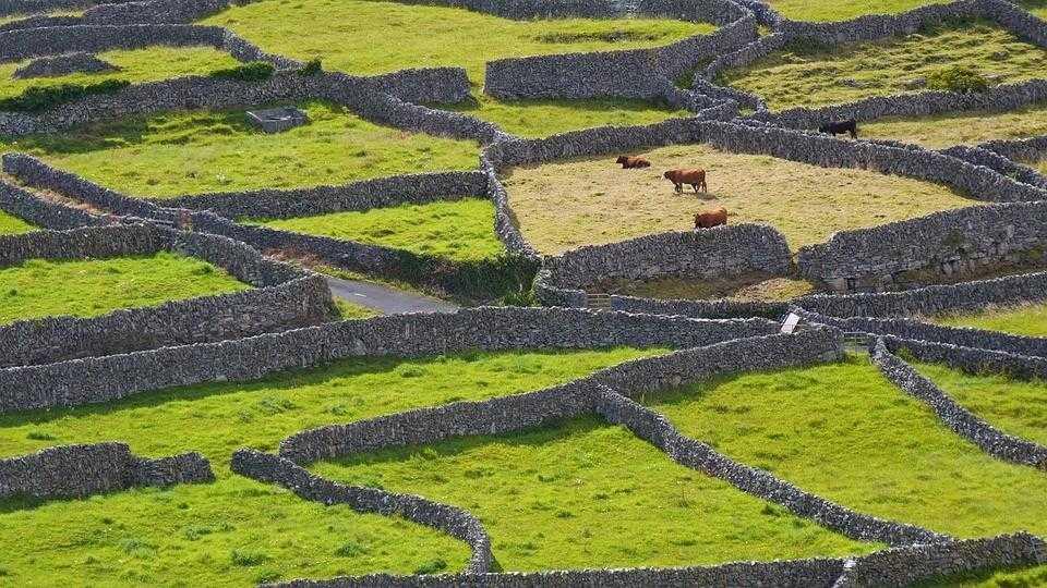 Ирландия, стены