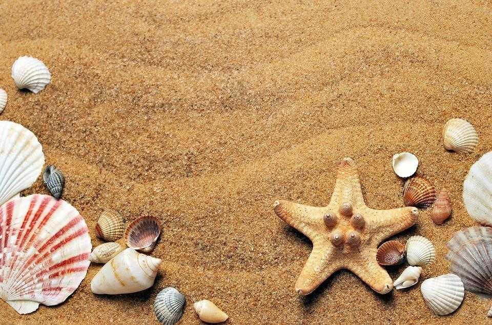 пляж, отдых, море