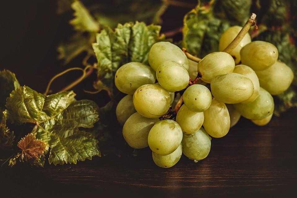 виноград, испания, новый год